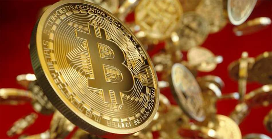 crypto vip sistema